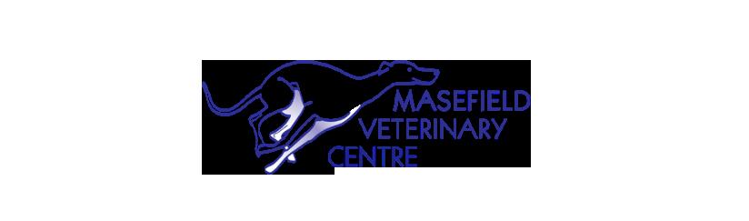 Our Team - Masefield Veterinary Centre